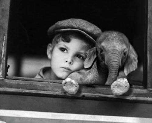 black and white photo of child with an elephant