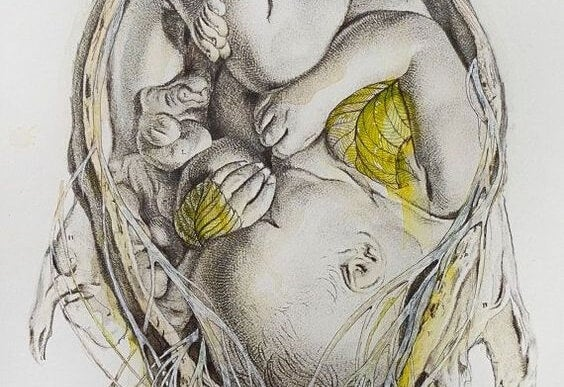 drawing of baby in the womb