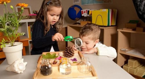 Strategies for applying the Montessori method at home