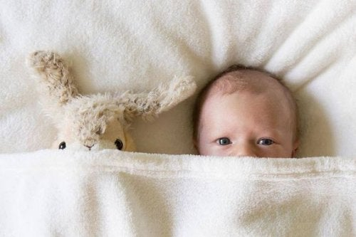 newborn baby sleeping with stuffed animal