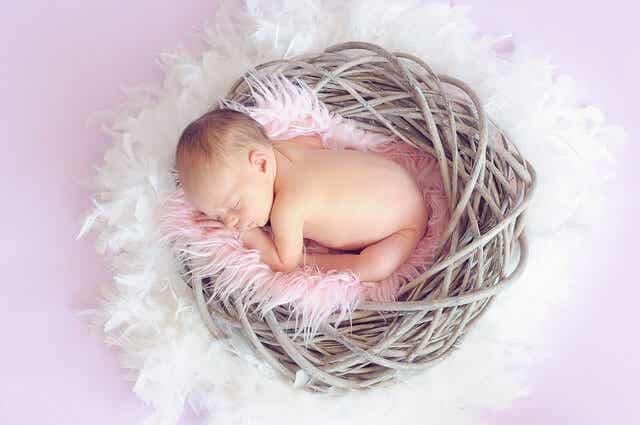 Understand Your Baby's Sleep Needs at 4-6 Months