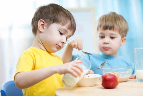 The 5 Best Snacks For Children To Eat After School