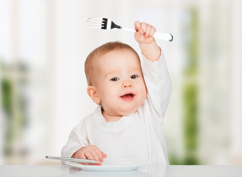 Savory Recipes for Babies Aged 6 to 9 Months