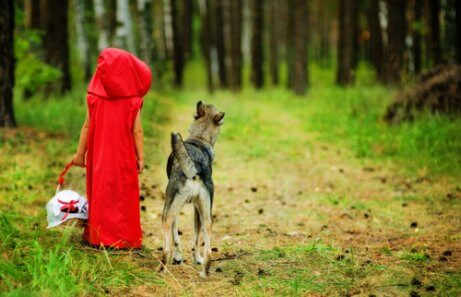 5 Teachings from Little Red Riding Hood