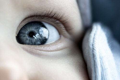 What Determines a Babies' Eye Color?