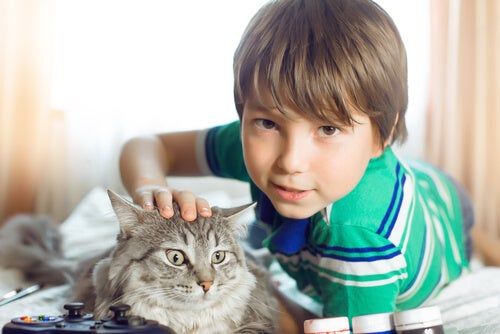 Out of all therapy animals, this boy chose a cat.