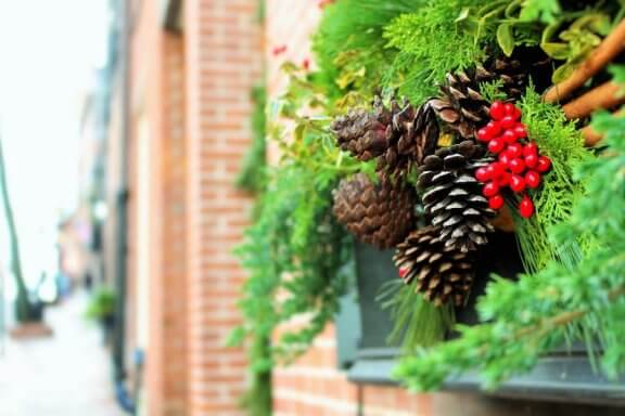 6 Ideas to Decorate Your Yard for Christmas