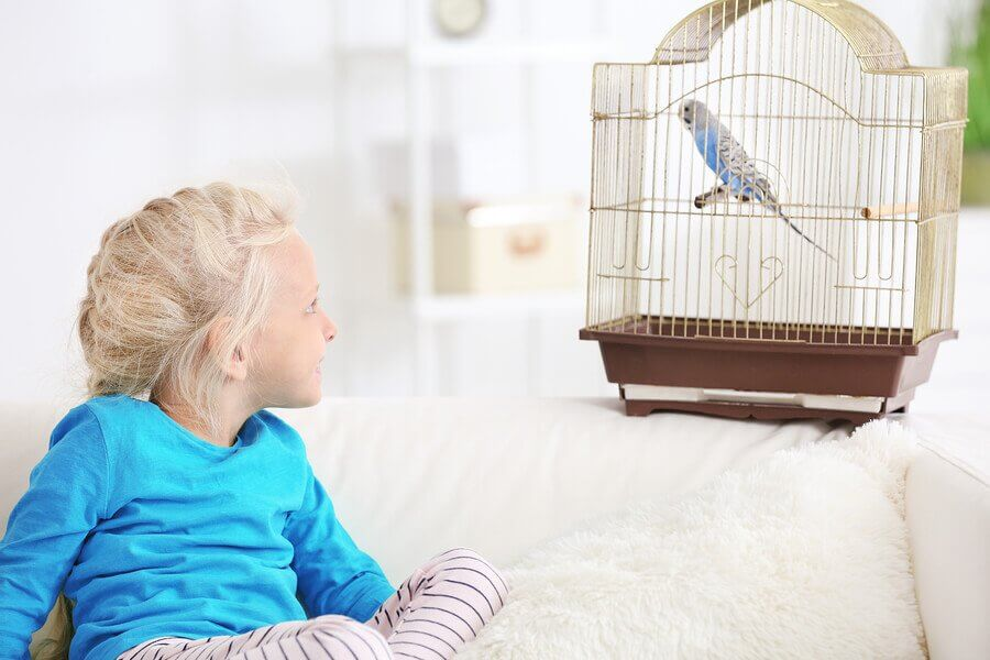 Advantages of Children Having a Pet