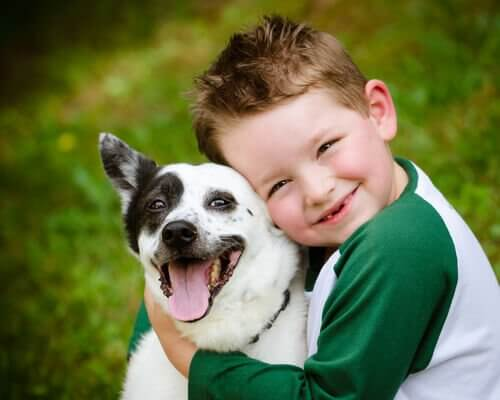 3 Great Children's Stories About Dogs
