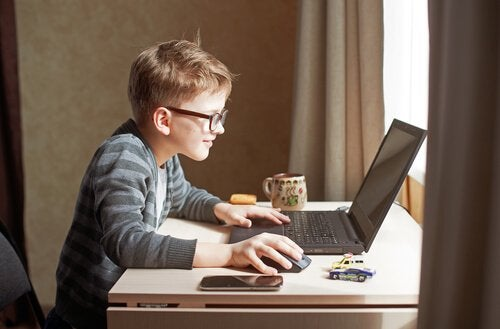 Boy learning from his computer classes.