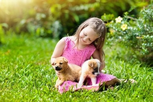 The Friendship Between Pets and Children