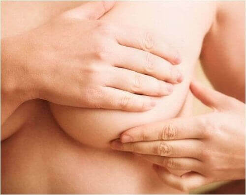 Changes in Breasts During Pregnancy