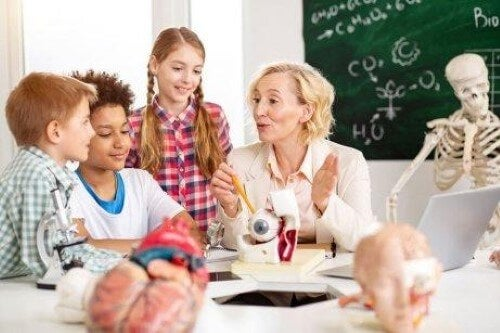 Neuroeducation in the Classroom: What You Should Know