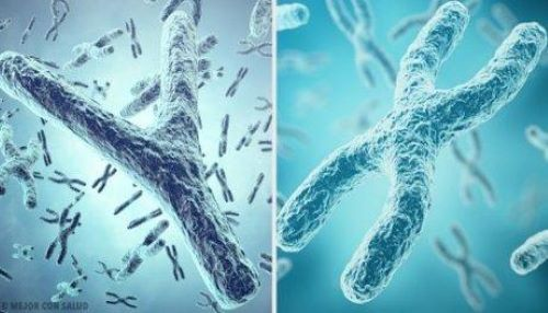 Autosomal Chromosome Disorders: What You Should Know