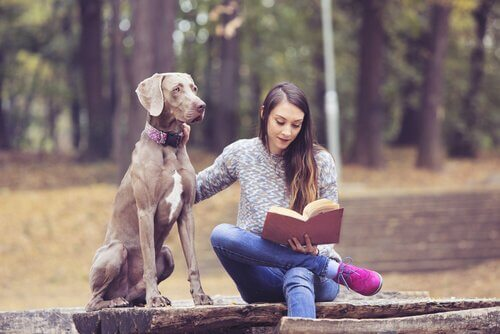 5 Benefits of Animal Therapy for Teenagers