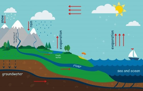 How to Explain the Water Cycle to Children