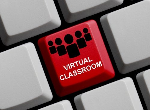 Virtual Education: What You Should Know