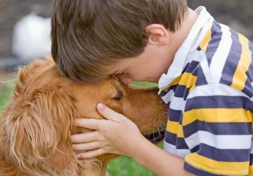 Types of Dogs Best Suited for Children