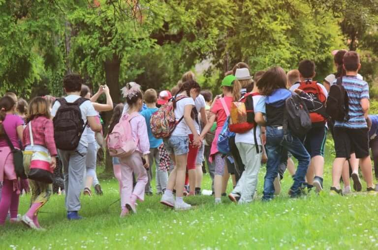 Who Is Responsible for Accidents on School Trips?