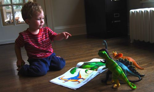 6 Children's Books About Dinosaurs