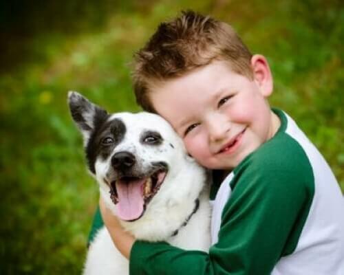 7 Pets for Children if You Live in the City