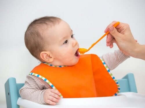 Puree Recipes for 6-Month-Old Babies