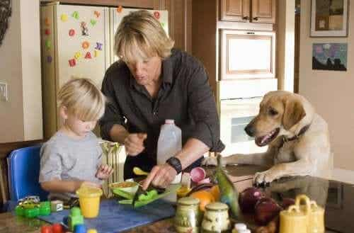 Movies that Teach Children About Love for Animals