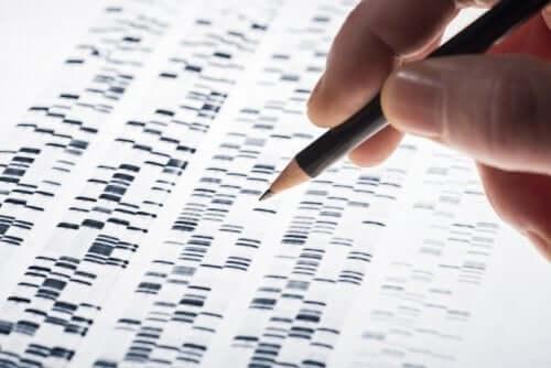 Prenatal Genetic Testing: Characteristics and Advantages