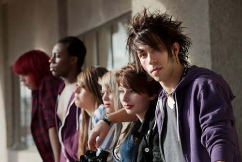 Adolescence and Youth Subcultures