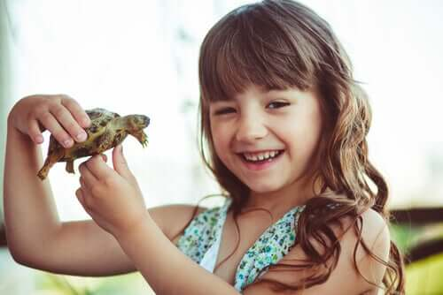 Effects of the Turtle Technique on Self-Esteem