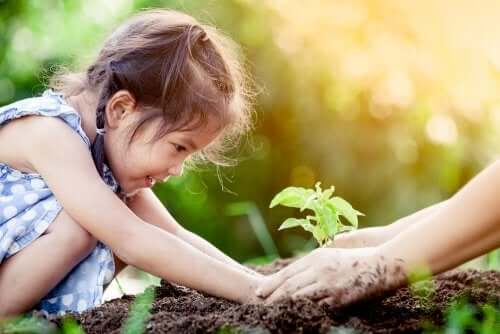 How to Explain Photosynthesis to Children
