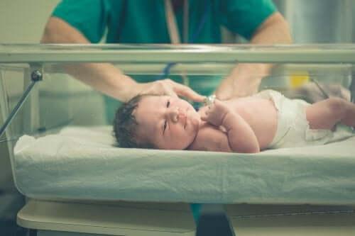 Neonatology: Definition and Characteristics