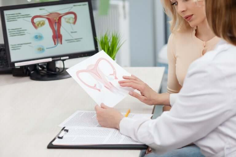 Uterine Cancer and the Human Papillomavirus Infection