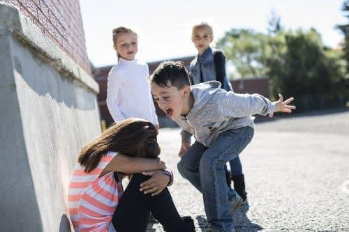 The Problem of Bullying at Recess