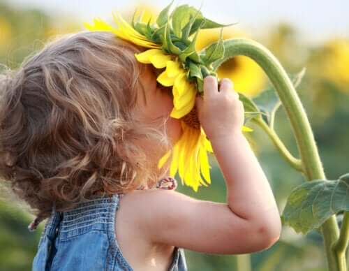 A toddler smelling a sunflower.