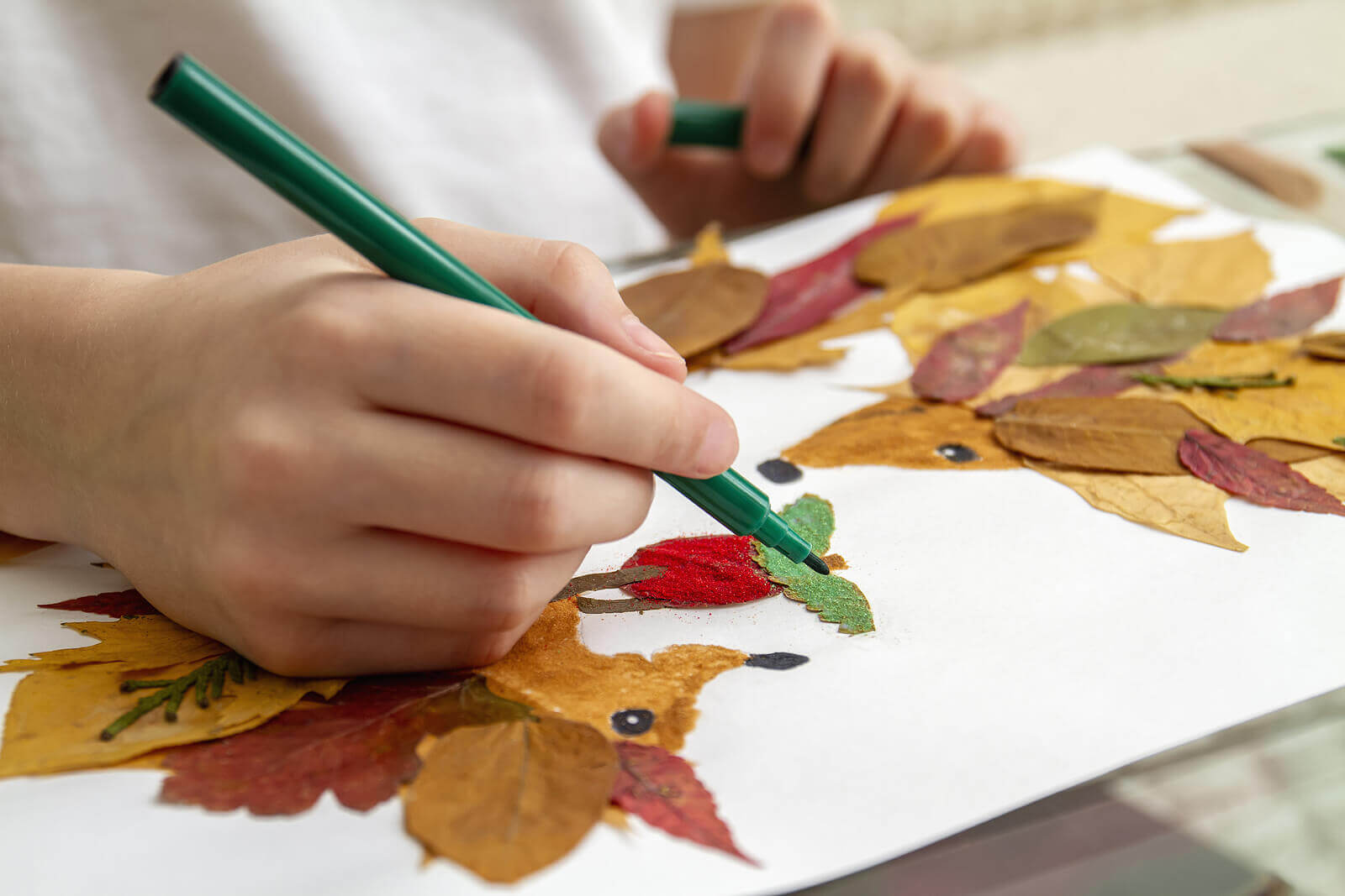Crafts with dry leaves to learn about plants.