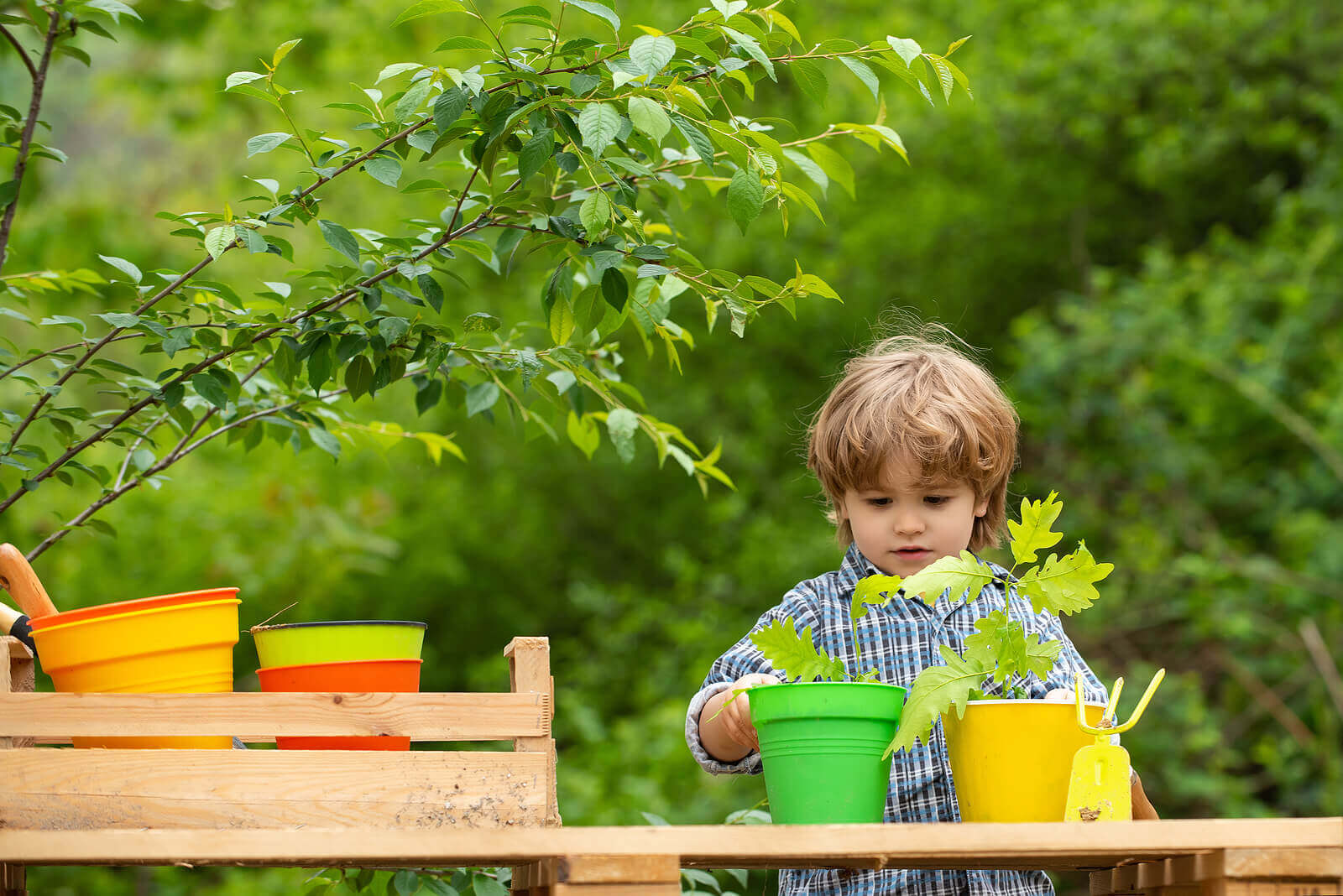 Environmental Educational Activities for the Whole Family