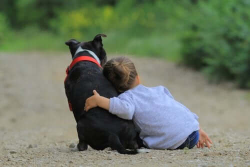 Raise Awareness Among Children About Animal Adoption