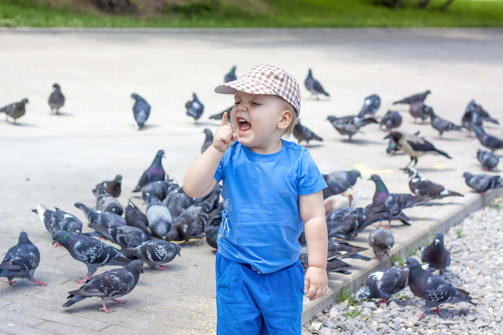 My Child Is Afraid of Birds: What Do I Do?