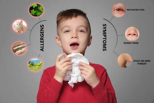 Preventing Allergies in Children: What Does the Evidence Say?