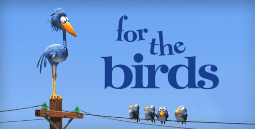 For the Birds: A Short Film to Reflect on Diversity