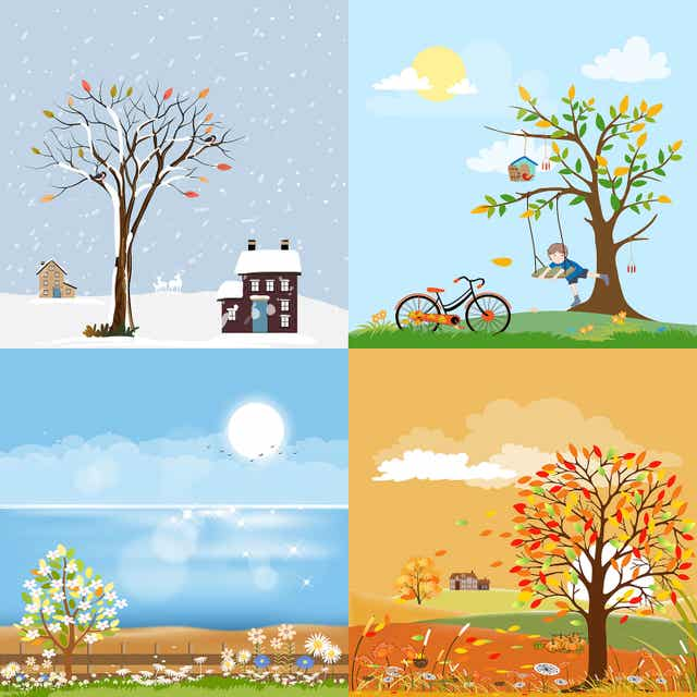 3 Crafts About the Seasons of the Year