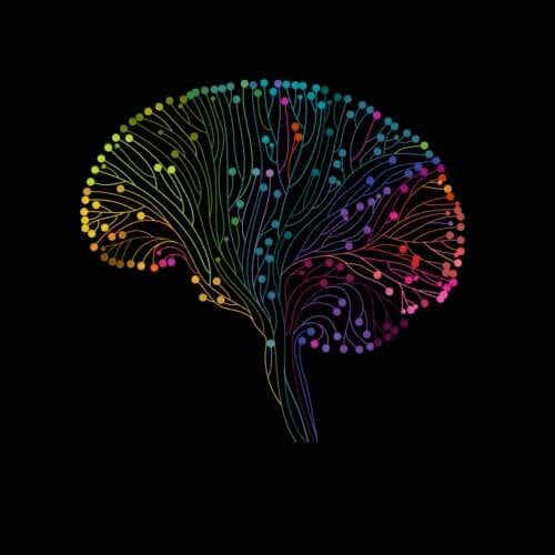 Neuroplasticity and Learning: A Beautiful Relationship