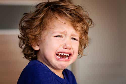 A crying toddler boy.