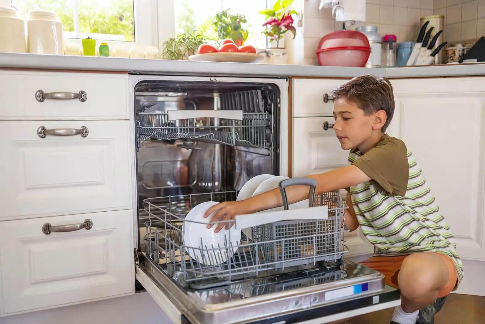 Boy dishwasher.