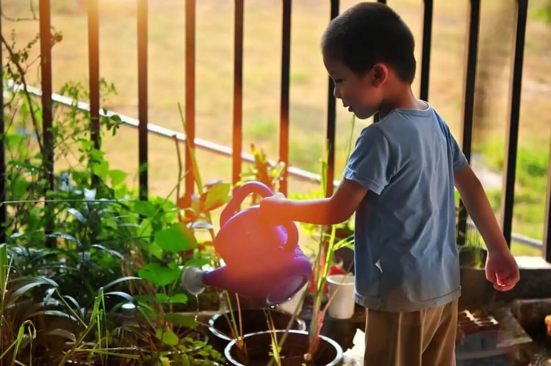 A boy watering.