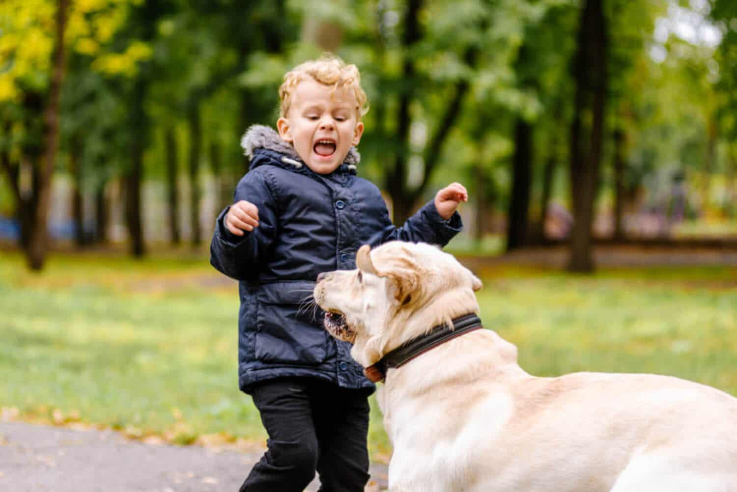 A child startled by a dog in the park.