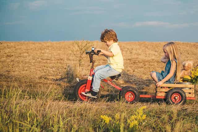 Kinderen spelen in een open veld