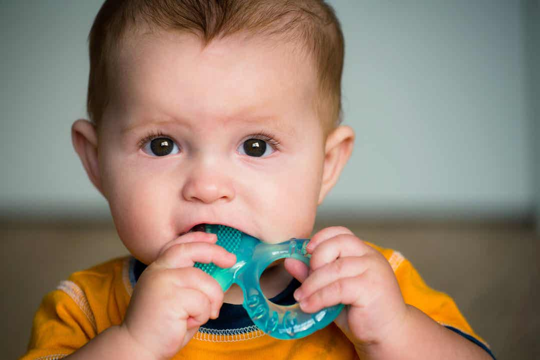A baby chewing on a teether.
