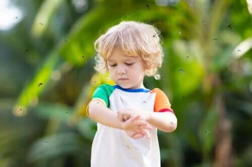 What is Prurigo Simplex in Children?